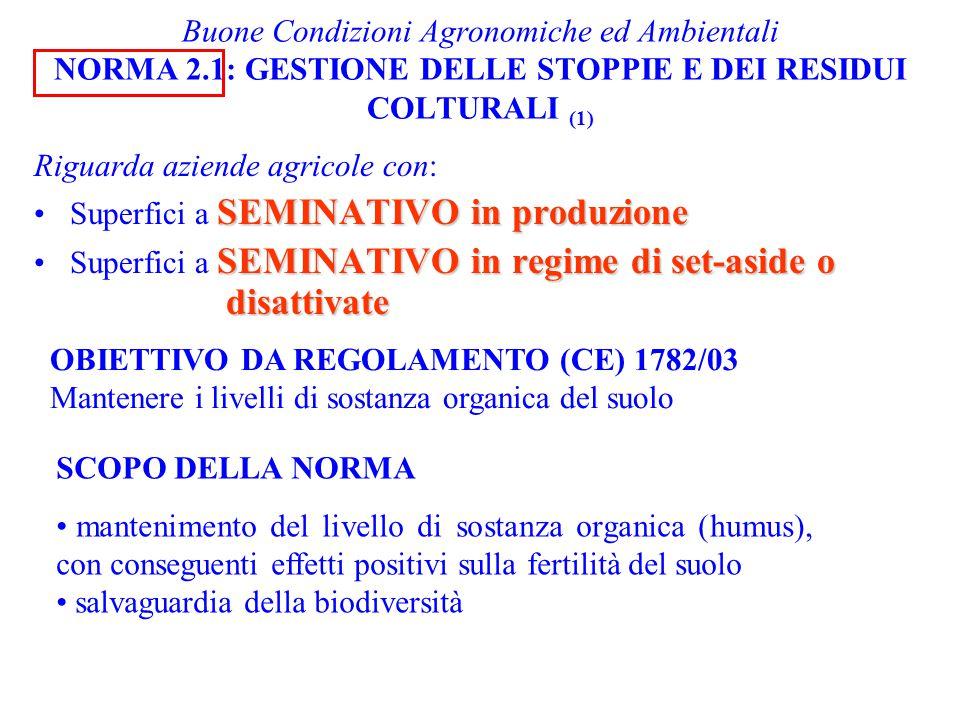 Buone Condizioni Agronomiche ed Ambientali NORMA 2.1: GESTIONE DELLE STOPPIE E DEI RESIDUI COLTURALI (1) Riguarda aziende agricole con: SEMINATIVO in