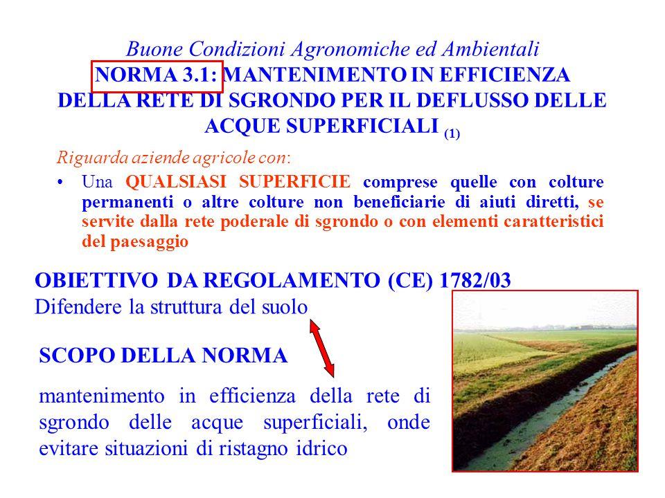 Buone Condizioni Agronomiche ed Ambientali NORMA 3.1: MANTENIMENTO IN EFFICIENZA DELLA RETE DI SGRONDO PER IL DEFLUSSO DELLE ACQUE SUPERFICIALI (1) Ri