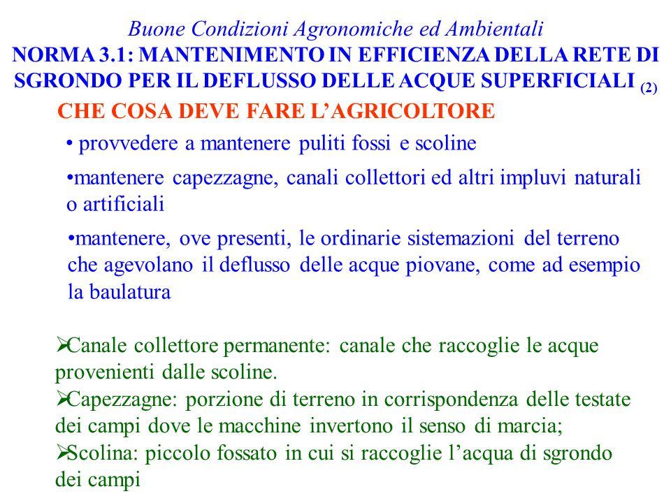 Buone Condizioni Agronomiche ed Ambientali NORMA 3.1: MANTENIMENTO IN EFFICIENZA DELLA RETE DI SGRONDO PER IL DEFLUSSO DELLE ACQUE SUPERFICIALI (2) CH