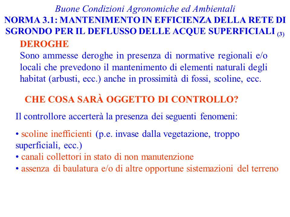 Buone Condizioni Agronomiche ed Ambientali NORMA 3.1: MANTENIMENTO IN EFFICIENZA DELLA RETE DI SGRONDO PER IL DEFLUSSO DELLE ACQUE SUPERFICIALI (3) CH