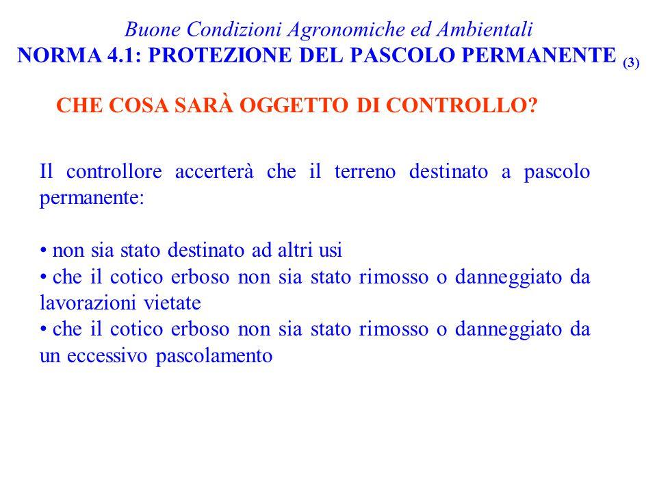 Buone Condizioni Agronomiche ed Ambientali NORMA 4.1: PROTEZIONE DEL PASCOLO PERMANENTE (3) CHE COSA SARÀ OGGETTO DI CONTROLLO? Il controllore accerte