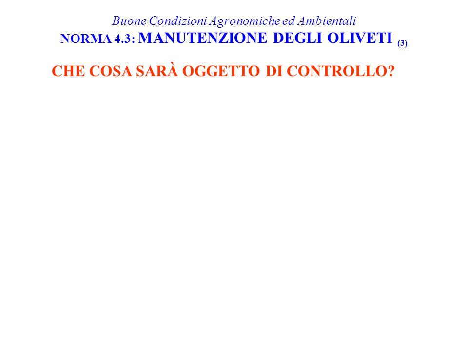 CHE COSA SARÀ OGGETTO DI CONTROLLO? Buone Condizioni Agronomiche ed Ambientali NORMA 4.3: MANUTENZIONE DEGLI OLIVETI (3)