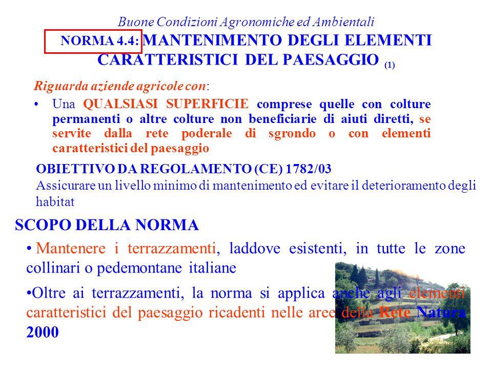 Buone Condizioni Agronomiche ed Ambientali NORMA 4.4: MANTENIMENTO DEGLI ELEMENTI CARATTERISTICI DEL PAESAGGIO (1) Riguarda aziende agricole con: Una