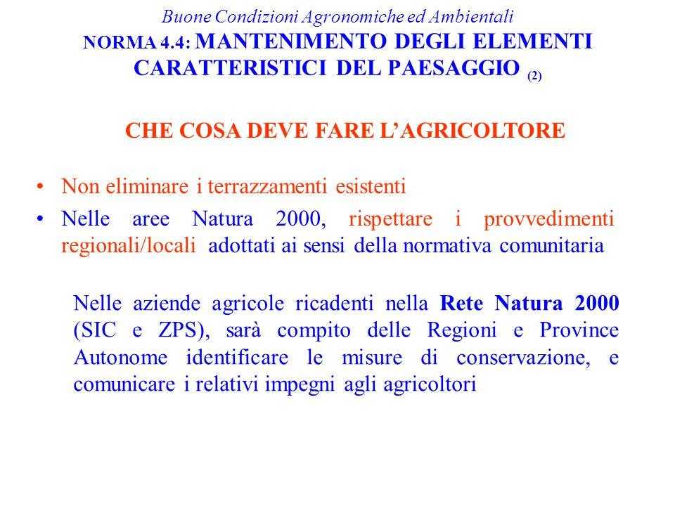 Non eliminare i terrazzamenti esistenti Nelle aree Natura 2000, rispettare i provvedimenti regionali/locali adottati ai sensi della normativa comunita