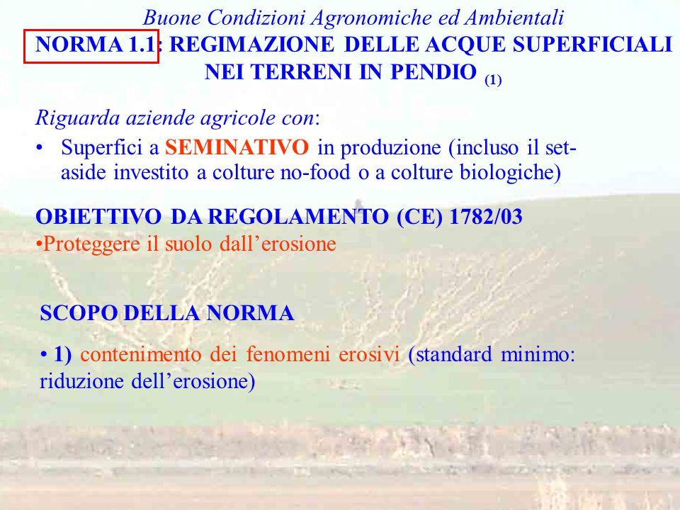 Buone Condizioni Agronomiche ed Ambientali NORMA 1.1: REGIMAZIONE DELLE ACQUE SUPERFICIALI NEI TERRENI IN PENDIO (1) Riguarda aziende agricole con: Su