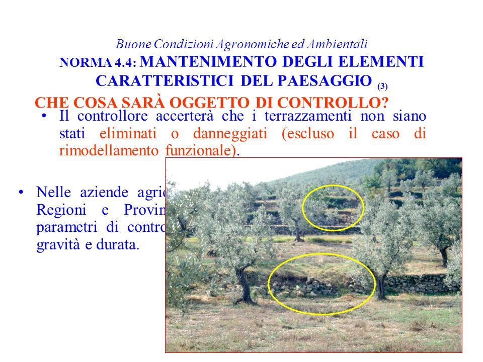 Buone Condizioni Agronomiche ed Ambientali NORMA 4.4: MANTENIMENTO DEGLI ELEMENTI CARATTERISTICI DEL PAESAGGIO (3) Il controllore accerterà che i terr