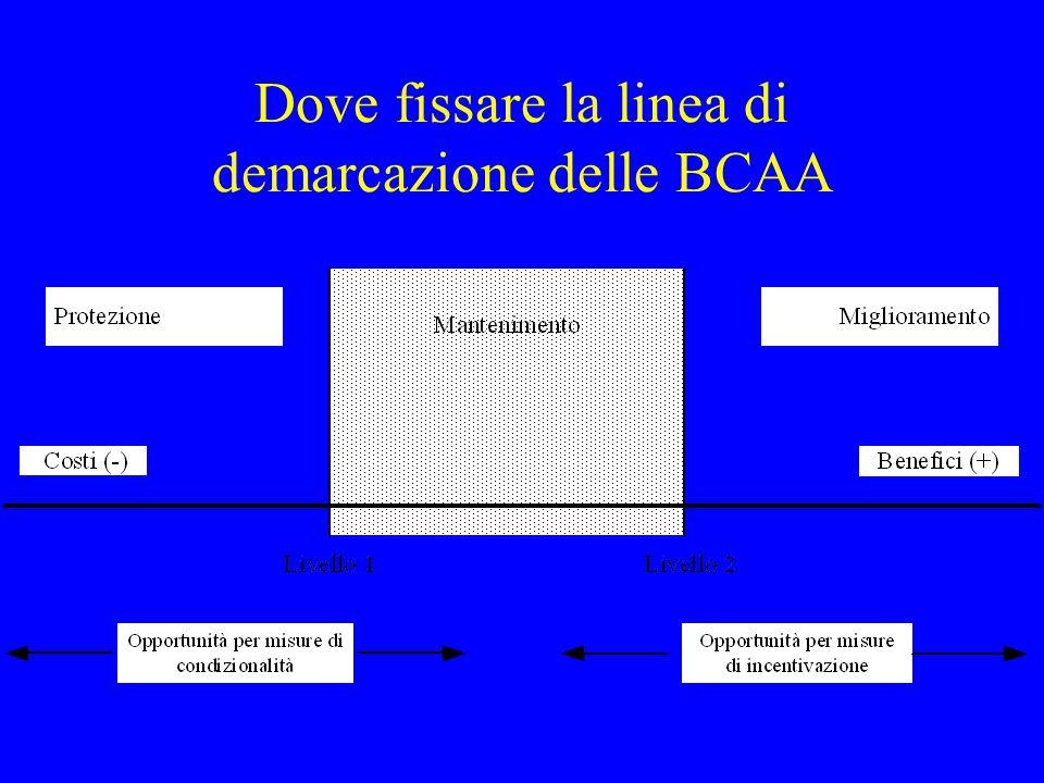 Dove fissare la linea di demarcazione delle BCAA