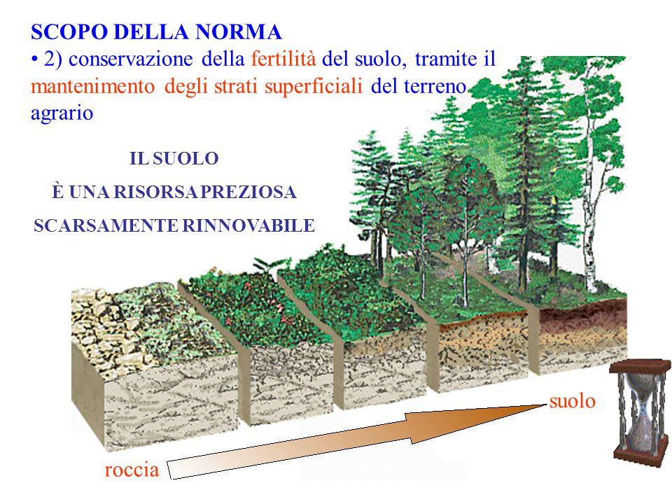 IL SUOLO È UNA RISORSA PREZIOSA SCARSAMENTE RINNOVABILE roccia suolo SCOPO DELLA NORMA 2) conservazione della fertilità del suolo, tramite il mantenim
