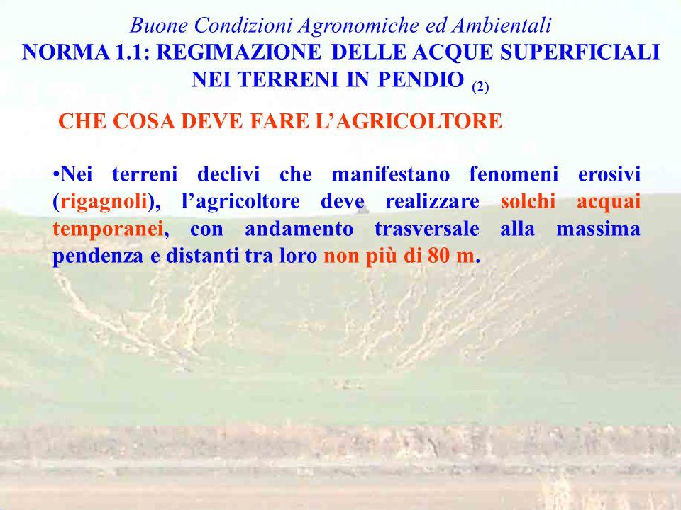 Non eliminare i terrazzamenti esistenti Nelle aree Natura 2000, rispettare i provvedimenti regionali/locali adottati ai sensi della normativa comunitaria CHE COSA DEVE FARE L'AGRICOLTORE Buone Condizioni Agronomiche ed Ambientali NORMA 4.4: MANTENIMENTO DEGLI ELEMENTI CARATTERISTICI DEL PAESAGGIO (2) Nelle aziende agricole ricadenti nella Rete Natura 2000 (SIC e ZPS), sarà compito delle Regioni e Province Autonome identificare le misure di conservazione, e comunicare i relativi impegni agli agricoltori