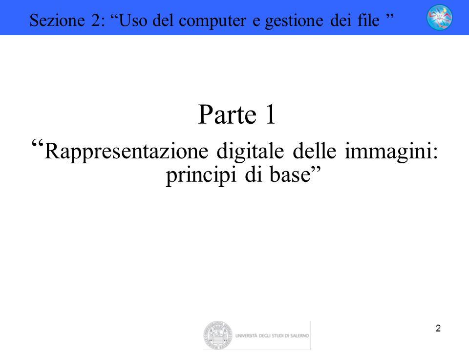 """2 Sezione 2: """"Uso del computer e gestione dei file """" Parte 1 """" Rappresentazione digitale delle immagini: principi di base"""""""