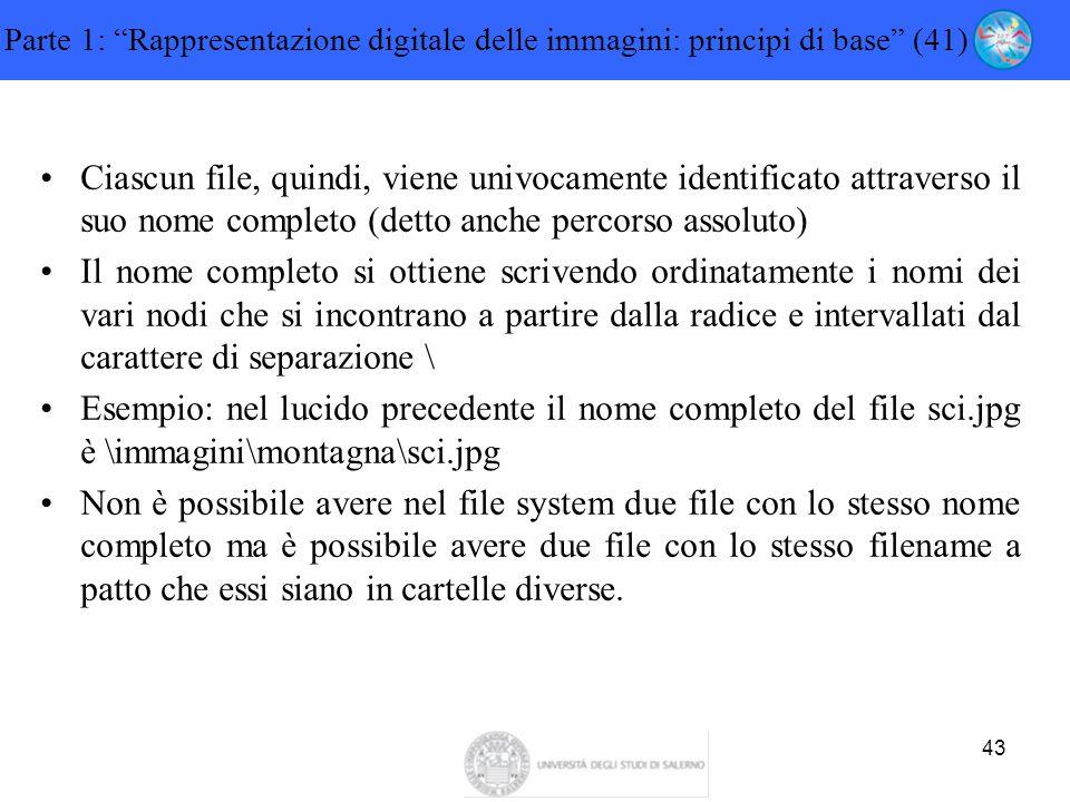 """43 Parte 1: """"Rappresentazione digitale delle immagini: principi di base"""" (41) Ciascun file, quindi, viene univocamente identificato attraverso il suo"""