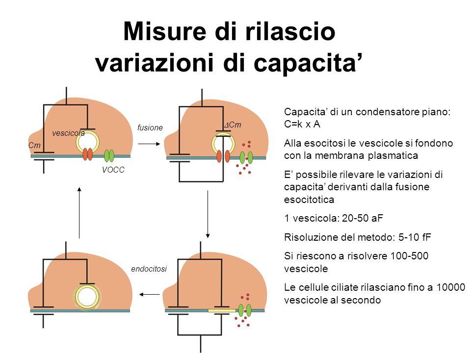 VOCC vescicola fusione endocitosi Capacita' di un condensatore piano: C=k x A Alla esocitosi le vescicole si fondono con la membrana plasmatica E' pos