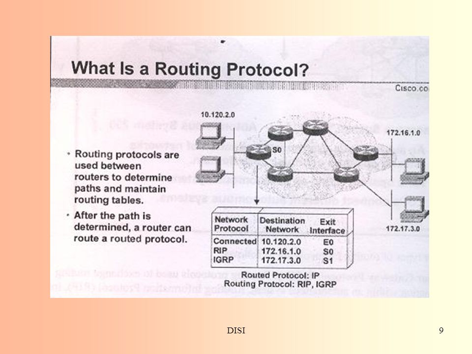 DISI20 Distance vector e link state Routing Protocol