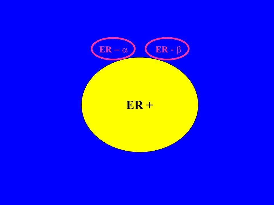 ER + ER –  ER - 