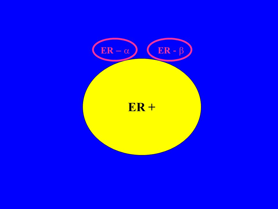 Androstenedione Testosterone Estrone Estradiolo ER + cells ER- cells Aromatase inhibitors Aromatase (Ovary, Fat, Liver, Breast) Tamoxifen Er-  Er- 