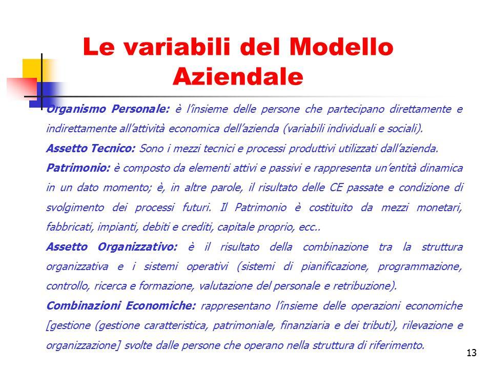 13 Le variabili del Modello Aziendale Organismo Personale: è l'insieme delle persone che partecipano direttamente e indirettamente all'attività econom