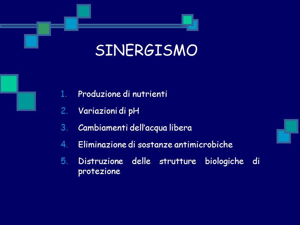 SINERGISMO 1. Produzione di nutrienti 2. Variazioni di pH 3. Cambiamenti dell'acqua libera 4. Eliminazione di sostanze antimicrobiche 5. Distruzione d