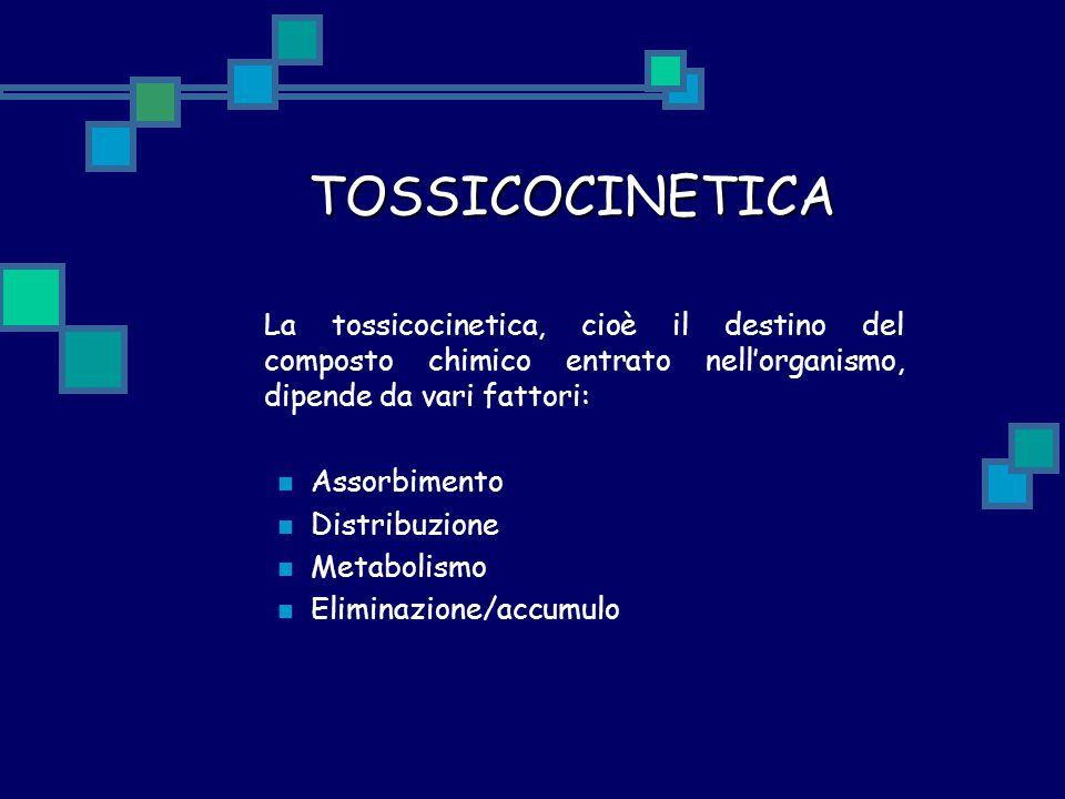 TOSSICOCINETICA La tossicocinetica, cioè il destino del composto chimico entrato nell'organismo, dipende da vari fattori: Assorbimento Distribuzione M