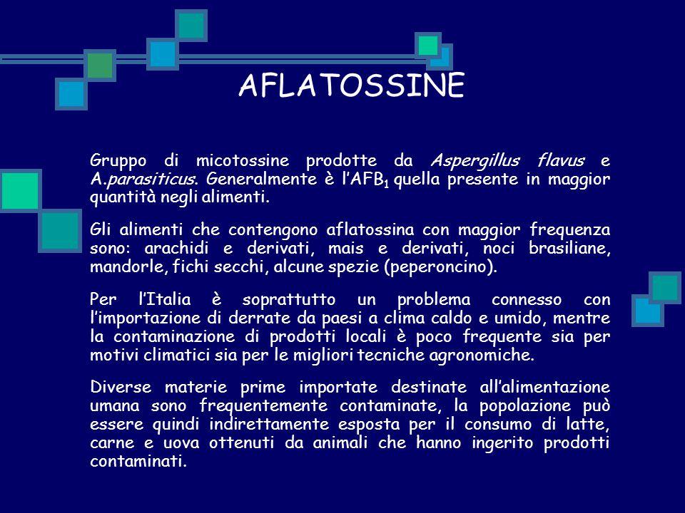 AFLATOSSINE Gruppo di micotossine prodotte da Aspergillus flavus e A.parasiticus. Generalmente è l'AFB 1 quella presente in maggior quantità negli ali