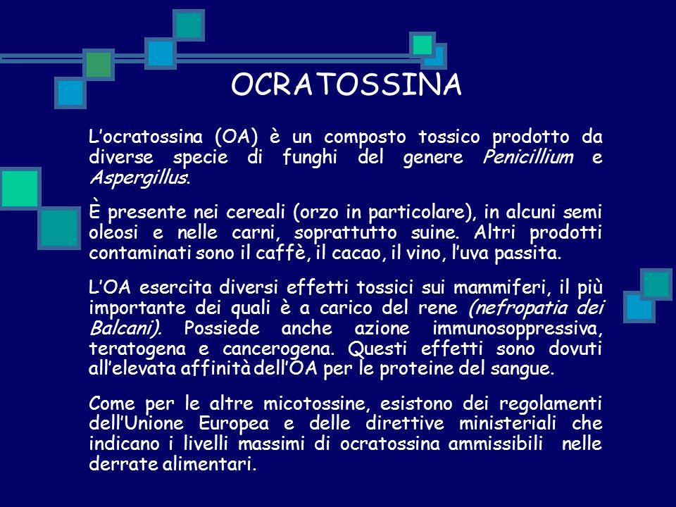 OCRATOSSINA L'ocratossina (OA) è un composto tossico prodotto da diverse specie di funghi del genere Penicillium e Aspergillus. È presente nei cereali
