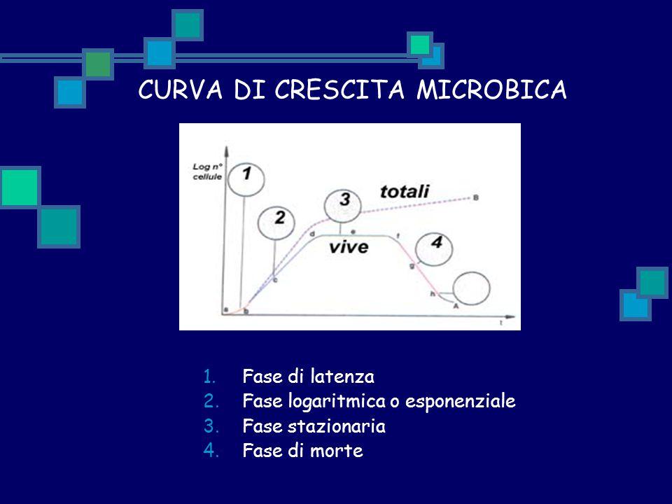 CURVA DI CRESCITA MICROBICA 1.Fase di latenza 2.Fase logaritmica o esponenziale 3.Fase stazionaria 4.Fase di morte