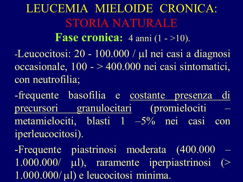 LEUCEMIA MIELOIDE CRONICA: STORIA NATURALE Fase cronica : 4 anni (1 - >10). - Leucocitosi: 20 - 100.000 /  l nei casi a diagnosi occasionale, 100 - >