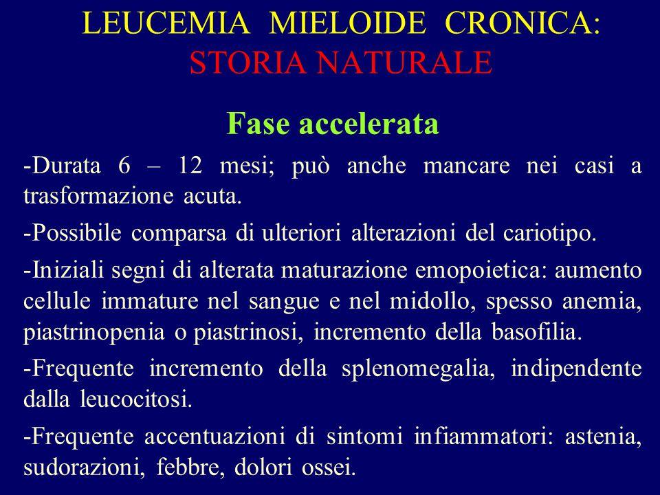 LEUCEMIA MIELOIDE CRONICA: STORIA NATURALE Fase accelerata -Durata 6 – 12 mesi; può anche mancare nei casi a trasformazione acuta. -Possibile comparsa