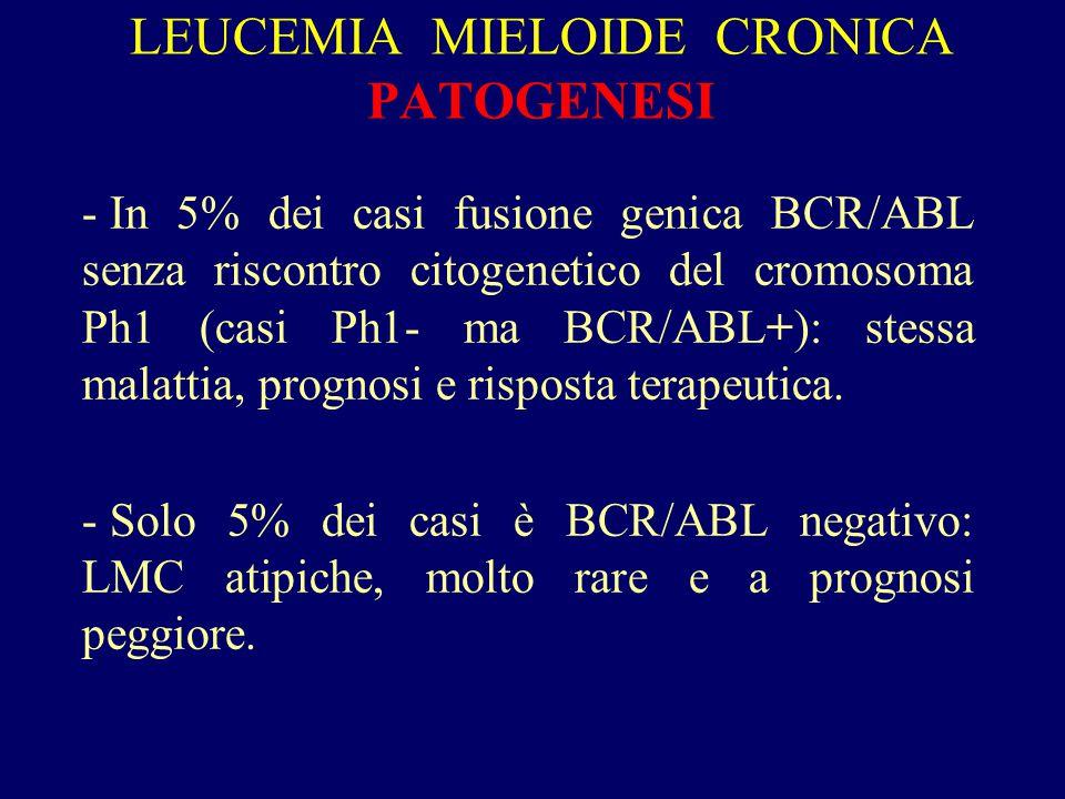 LEUCEMIA MIELOIDE CRONICA: DIAGNOSI -Sospettata per leucocitosi con neutrofilia (soprattutto se GB > 20.000 /  l) e presenza di cellule immature circolanti  piastrinosi.