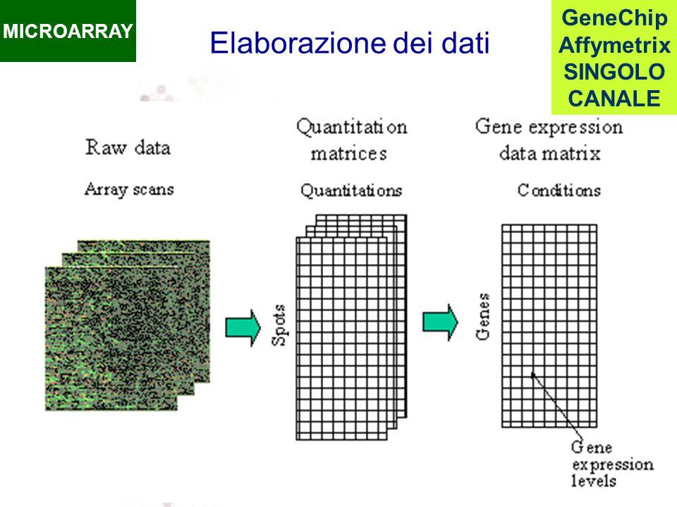 Elaborazione dei dati MICROARRAY GeneChip Affymetrix SINGOLO CANALE