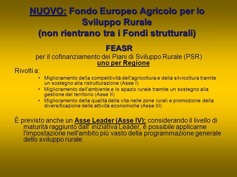 NUOVO: Fondo Europeo Agricolo per lo Sviluppo Rurale (non rientrano tra i Fondi strutturali) FEASR per il cofinanziamento dei Piani di Sviluppo Rurale