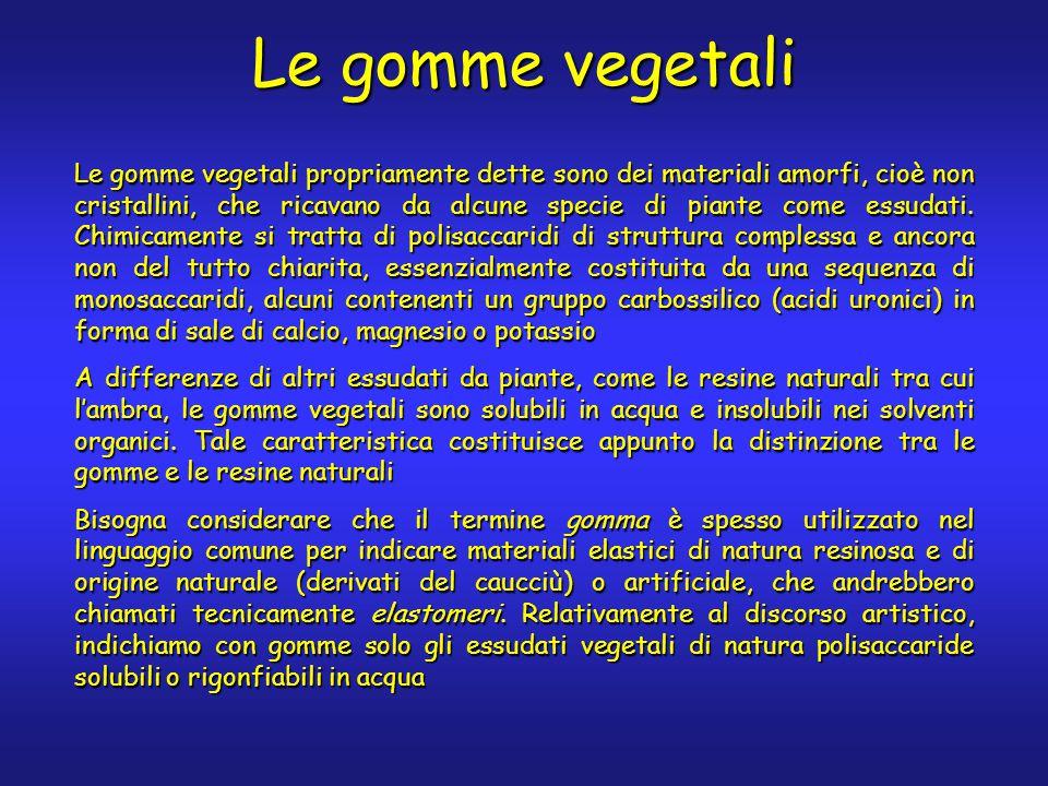 Le gomme vegetali Le gomme vegetali propriamente dette sono dei materiali amorfi, cioè non cristallini, che ricavano da alcune specie di piante come e