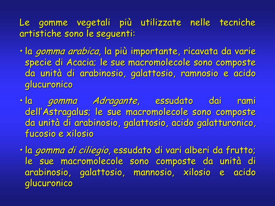Le gomme vegetali più utilizzate nelle tecniche artistiche sono le seguenti: la gomma arabica, la più importante, ricavata da varie specie di Acacia; le sue macromolecole sono composte da unità di arabinosio, galattosio, ramnosio e acido glucuronicola gomma arabica, la più importante, ricavata da varie specie di Acacia; le sue macromolecole sono composte da unità di arabinosio, galattosio, ramnosio e acido glucuronico la gomma Adragante, essudato dai rami dell'Astragalus; le sue macromolecole sono composte da unità di arabinosio, galattosio, acido galatturonico, fucosio e xilosiola gomma Adragante, essudato dai rami dell'Astragalus; le sue macromolecole sono composte da unità di arabinosio, galattosio, acido galatturonico, fucosio e xilosio la gomma di ciliegio, essudato di vari alberi da frutto; le sue macromolecole sono composte da unità di arabinosio, galattosio, mannosio, xilosio e acido glucuronicola gomma di ciliegio, essudato di vari alberi da frutto; le sue macromolecole sono composte da unità di arabinosio, galattosio, mannosio, xilosio e acido glucuronico