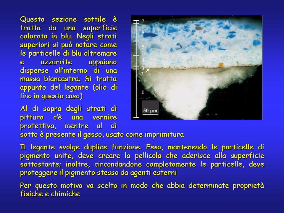 Questa sezione sottile è tratta da una superficie colorata in blu. Negli strati superiori si può notare come le particelle di blu oltremare e azzurrit
