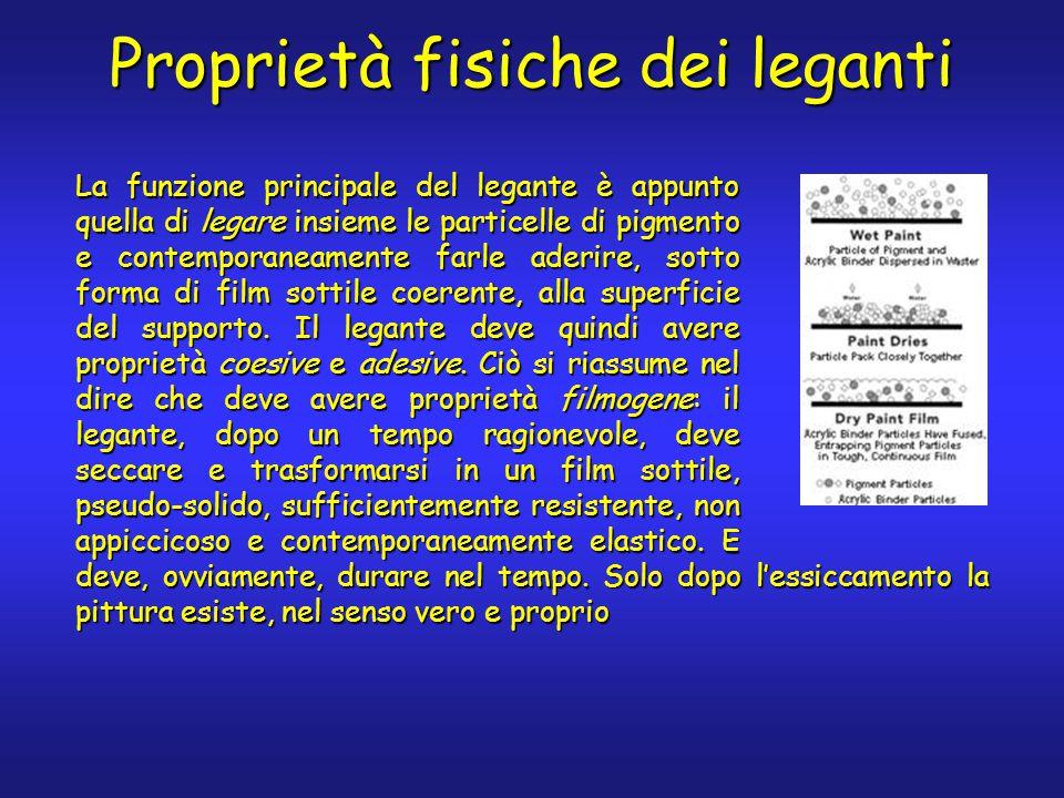 Proprietà fisiche dei leganti La funzione principale del legante è appunto quella di legare insieme le particelle di pigmento e contemporaneamente far