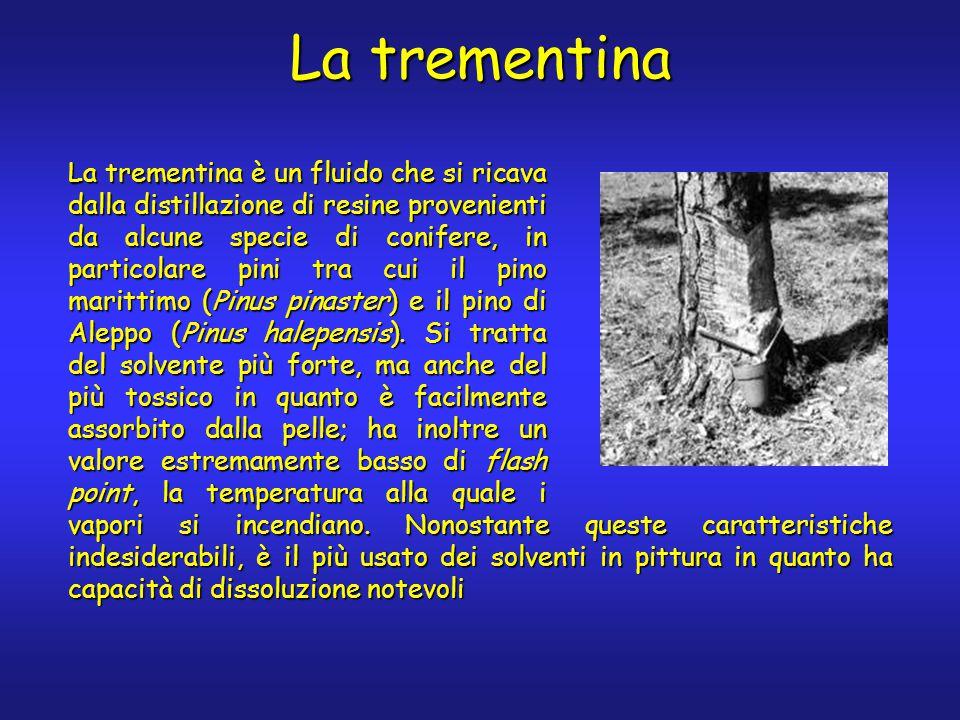 La trementina La trementina è un fluido che si ricava dalla distillazione di resine provenienti da alcune specie di conifere, in particolare pini tra