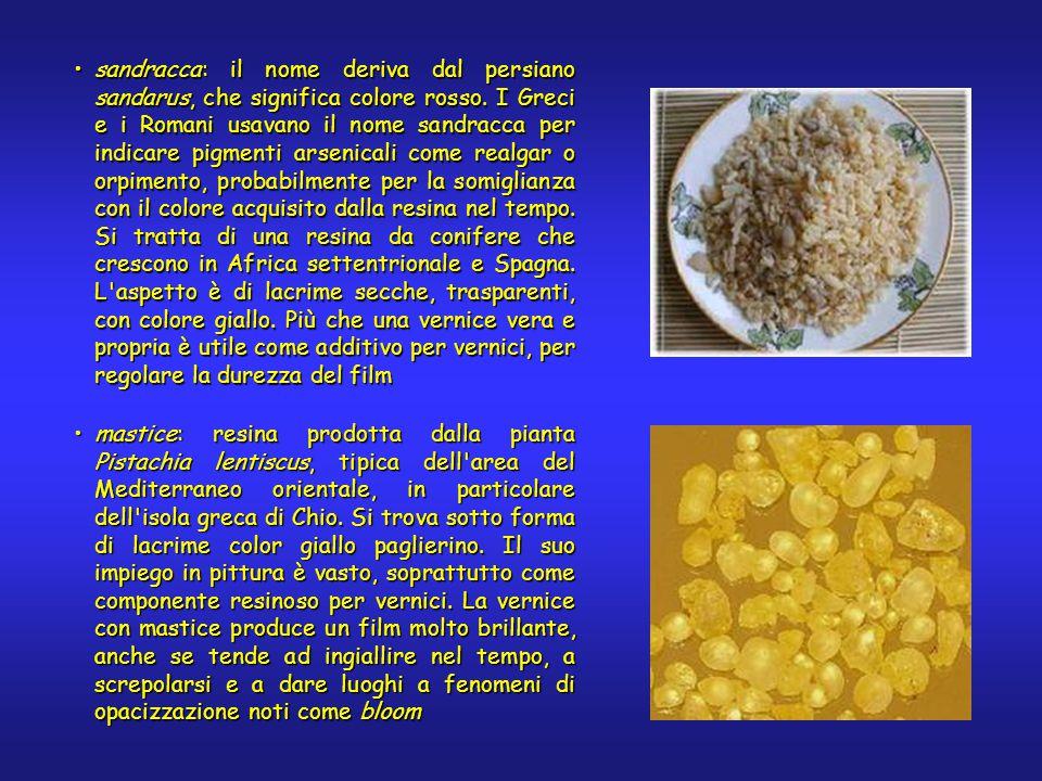 sandracca: il nome deriva dal persiano sandarus, che significa colore rosso. I Greci e i Romani usavano il nome sandracca per indicare pigmenti arseni