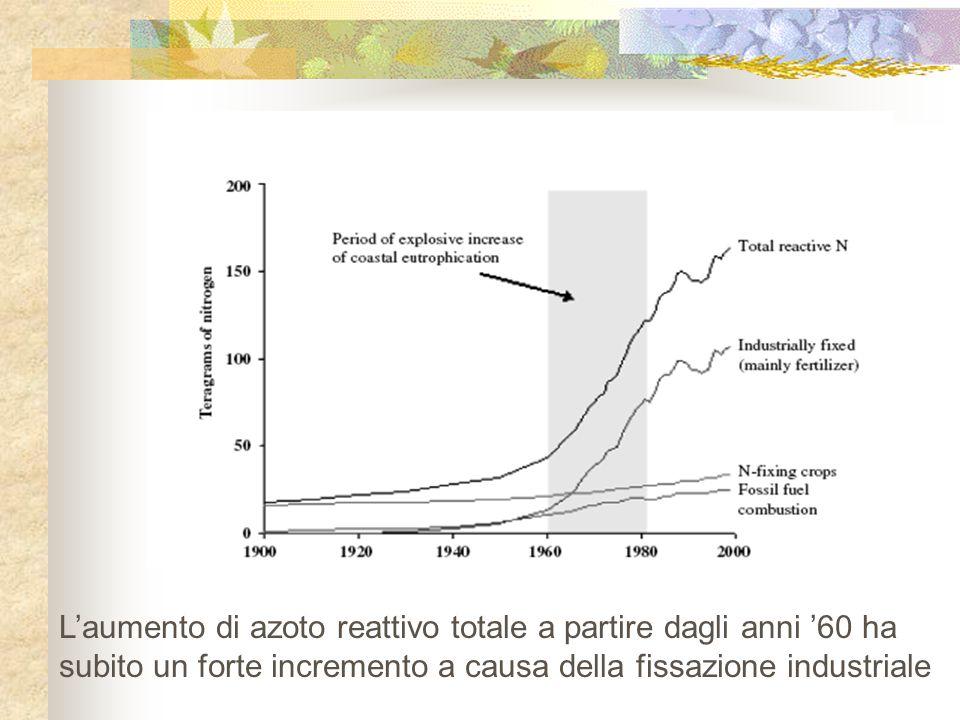 L'aumento di azoto reattivo totale a partire dagli anni '60 ha subito un forte incremento a causa della fissazione industriale