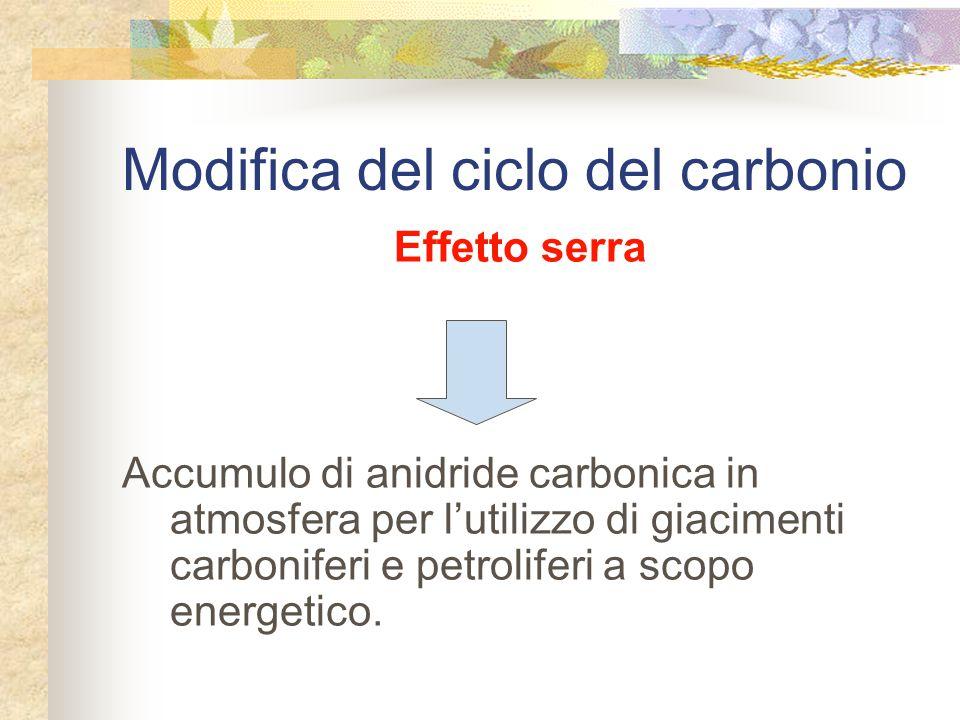 Modifica del ciclo del carbonio Effetto serra Accumulo di anidride carbonica in atmosfera per l'utilizzo di giacimenti carboniferi e petroliferi a scopo energetico.