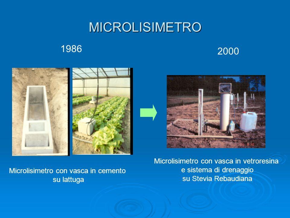 MICROLISIMETRO 1986 2000 Microlisimetro con vasca in cemento su lattuga Microlisimetro con vasca in vetroresina e sistema di drenaggio su Stevia Rebaudiana