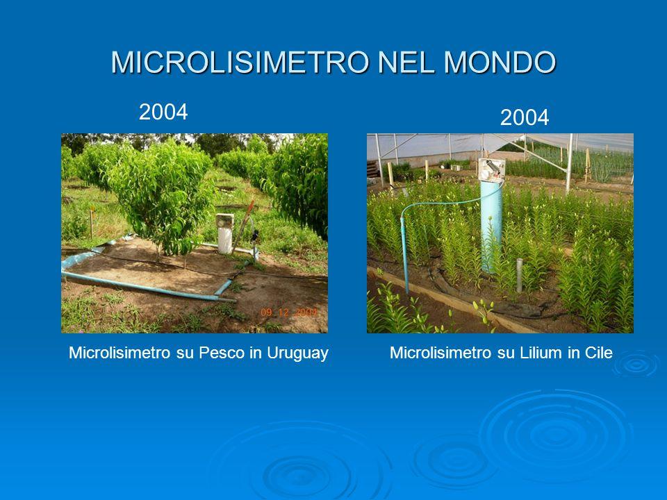 MICROLISIMETRO NEL MONDO 2004 Microlisimetro su Pesco in UruguayMicrolisimetro su Lilium in Cile