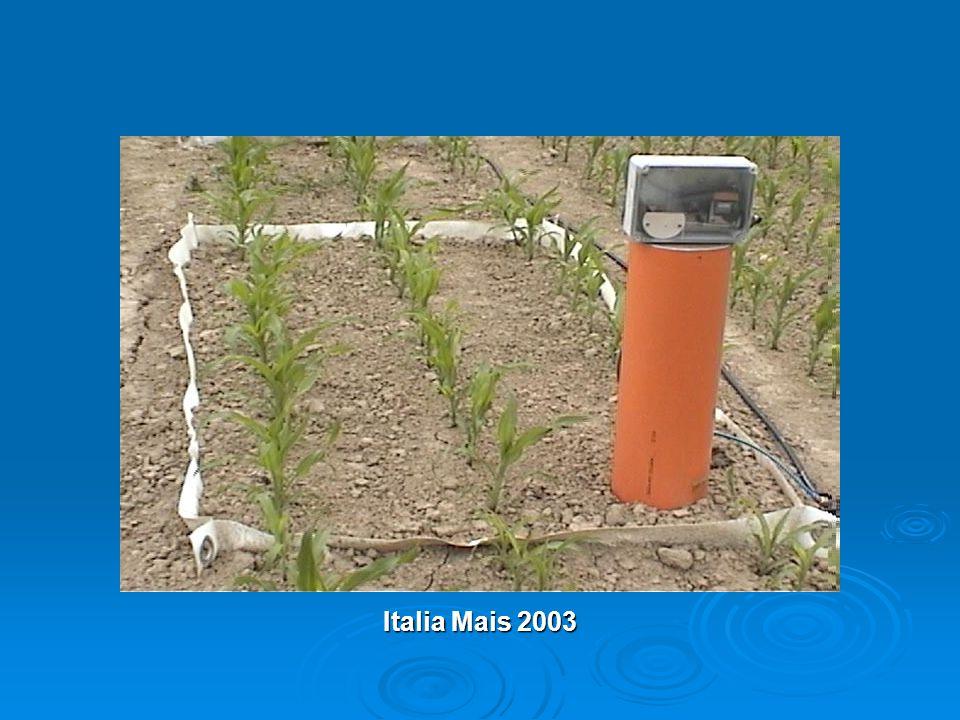 Italia Mais 2003
