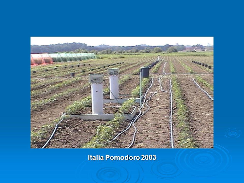 Italia Pomodoro 2003