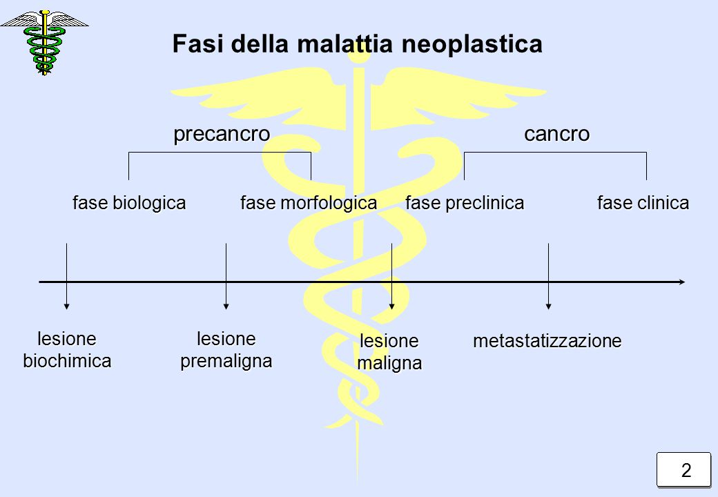 Fasi della malattia neoplastica precancro lesionebiochimicalesionepremaligna lesionemalignametastatizzazione cancro fase biologica fase morfologica fa