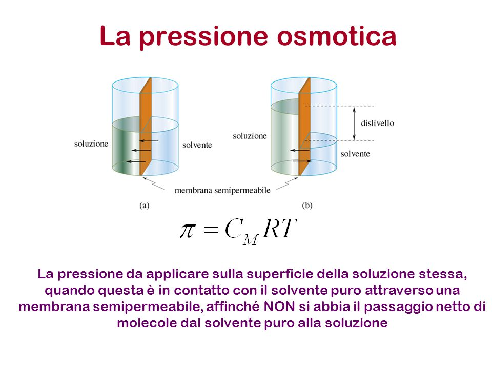 La pressione osmotica La pressione da applicare sulla superficie della soluzione stessa, quando questa è in contatto con il solvente puro attraverso una membrana semipermeabile, affinché NON si abbia il passaggio netto di molecole dal solvente puro alla soluzione