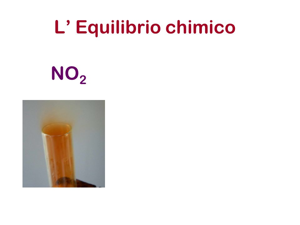 L' Equilibrio chimico NO 2