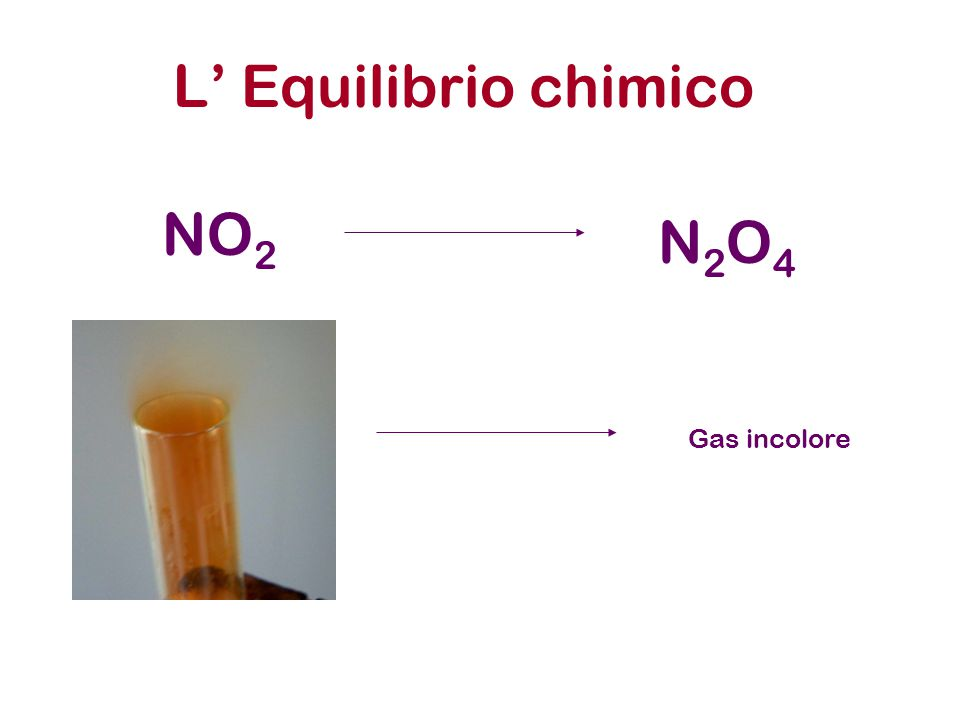 L' Equilibrio chimico NO 2 N2O4N2O4 Gas incolore