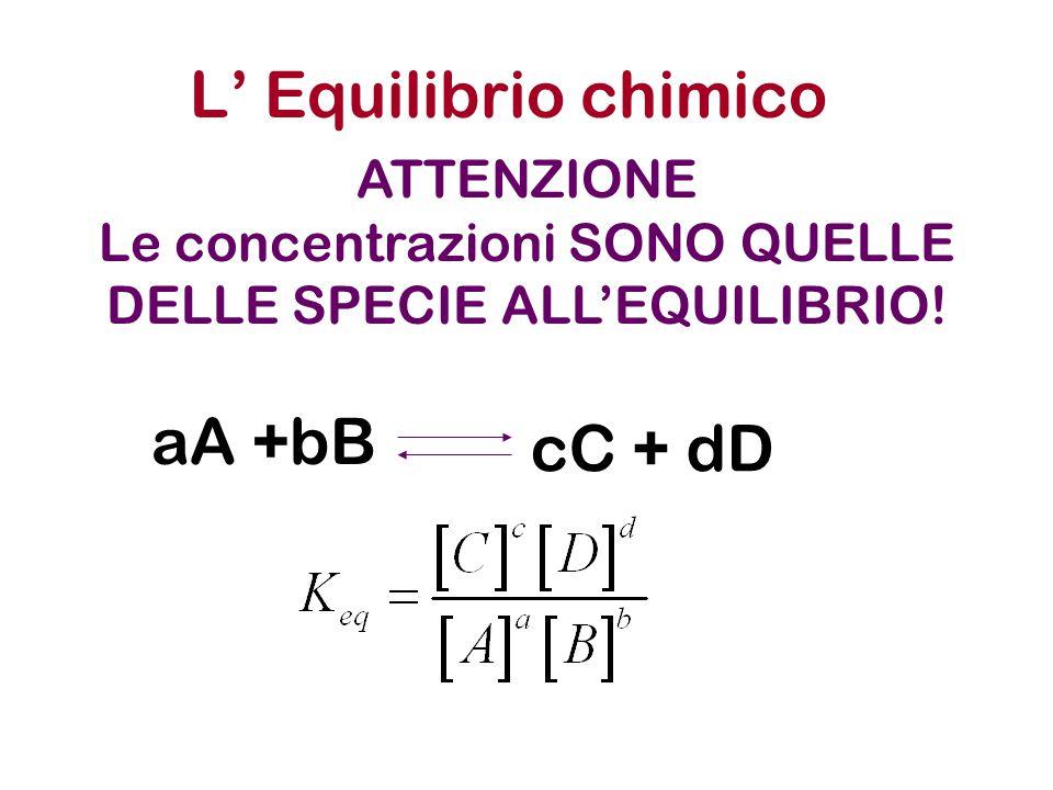 L' Equilibrio chimico aA +bB cC + dD ATTENZIONE Le concentrazioni SONO QUELLE DELLE SPECIE ALL'EQUILIBRIO!