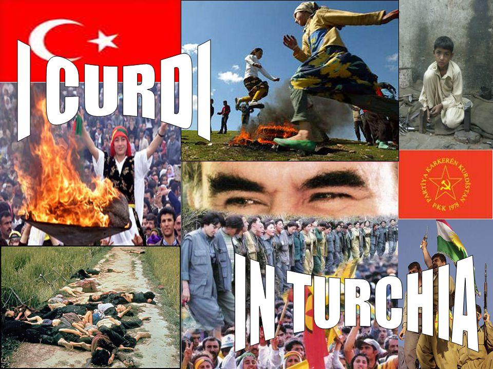 INDICE  Introduzione  Caratteri generali della Turchia  L opprimente potere dei militari turchi  Curdi, ingiustizia è fatta  Un popolo, quattro stati, una nazione: il popolo curdo  Paesaggi Curdi prima della battaglia  Turchia: a che punto la questione curda.