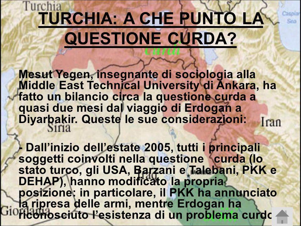 TURCHIA: A CHE PUNTO LA QUESTIONE CURDA.
