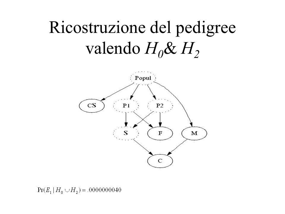 Ricostruzione del pedigree valendo H 0 & H 2